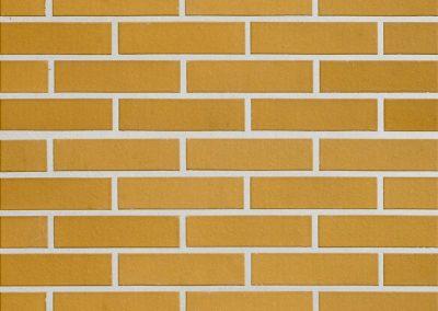 Dzintra-Облицовочная-плитка-стена-большая