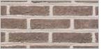 Heylen Bricks Rainbow Mangaan