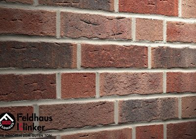 R663 Клинкерная плитка Feldhaus Klinker вид 1